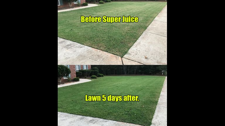 Lawn 3 before and after 1
