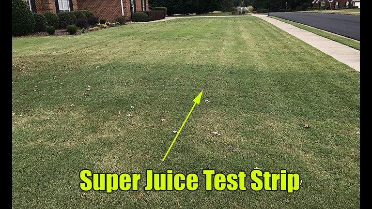 Lawn super juice test strip
